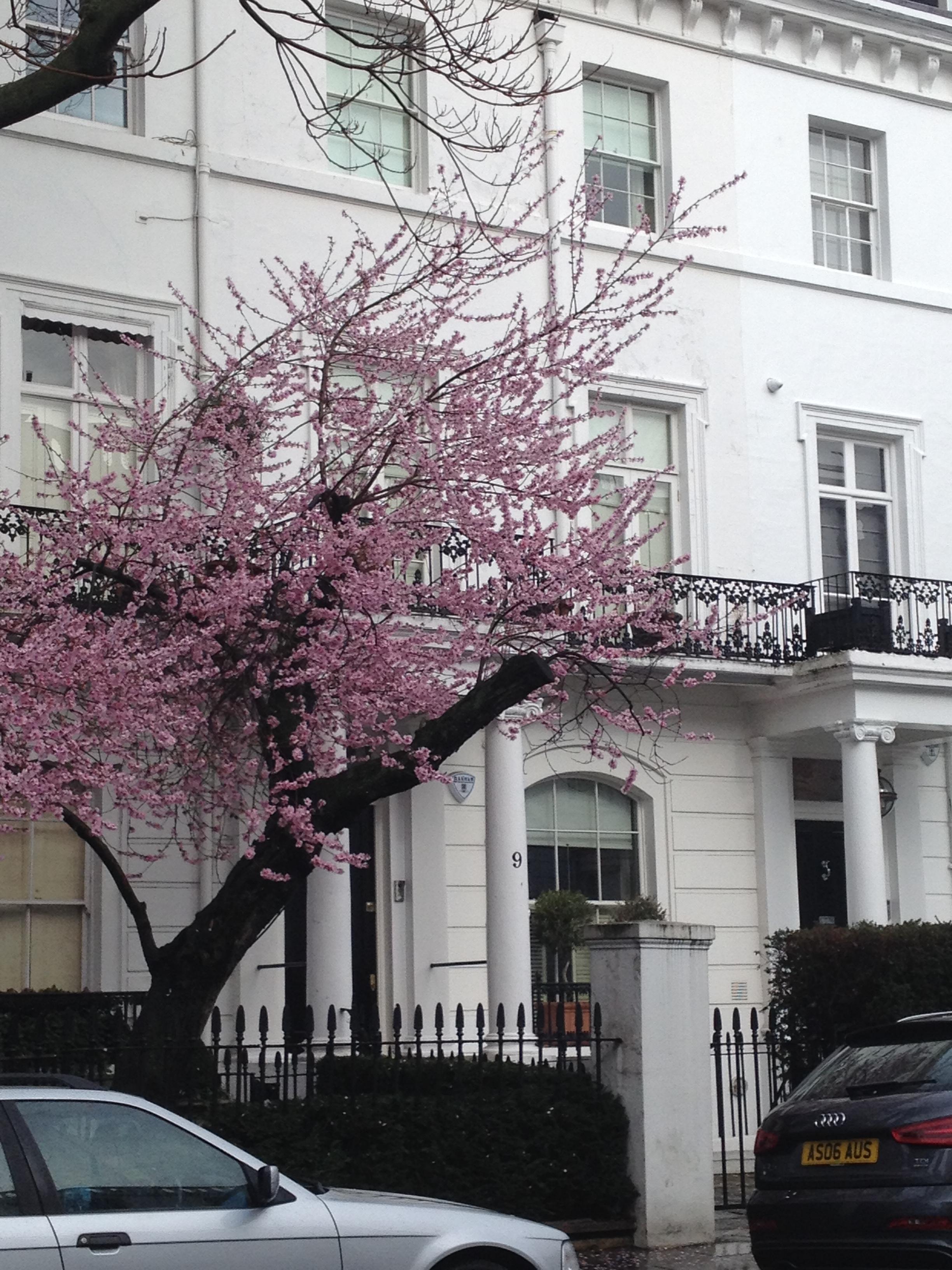 Un week end  Londres – WonderfulSpell